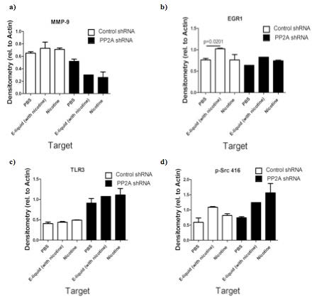 E-Fluid Induces Inflammation Responses in Lung Epithelial