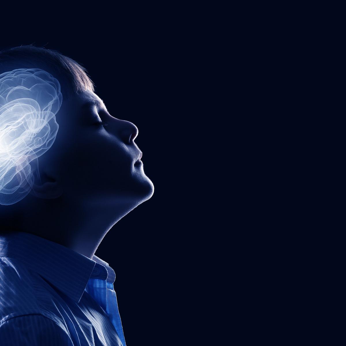 early brain development