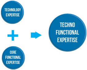 Techno Functional Consulting