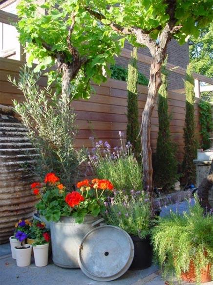 Tuin met mediterrane sfeer  Inrichtinghuiscom