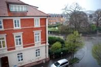 Ausblick Novotel Freiburg