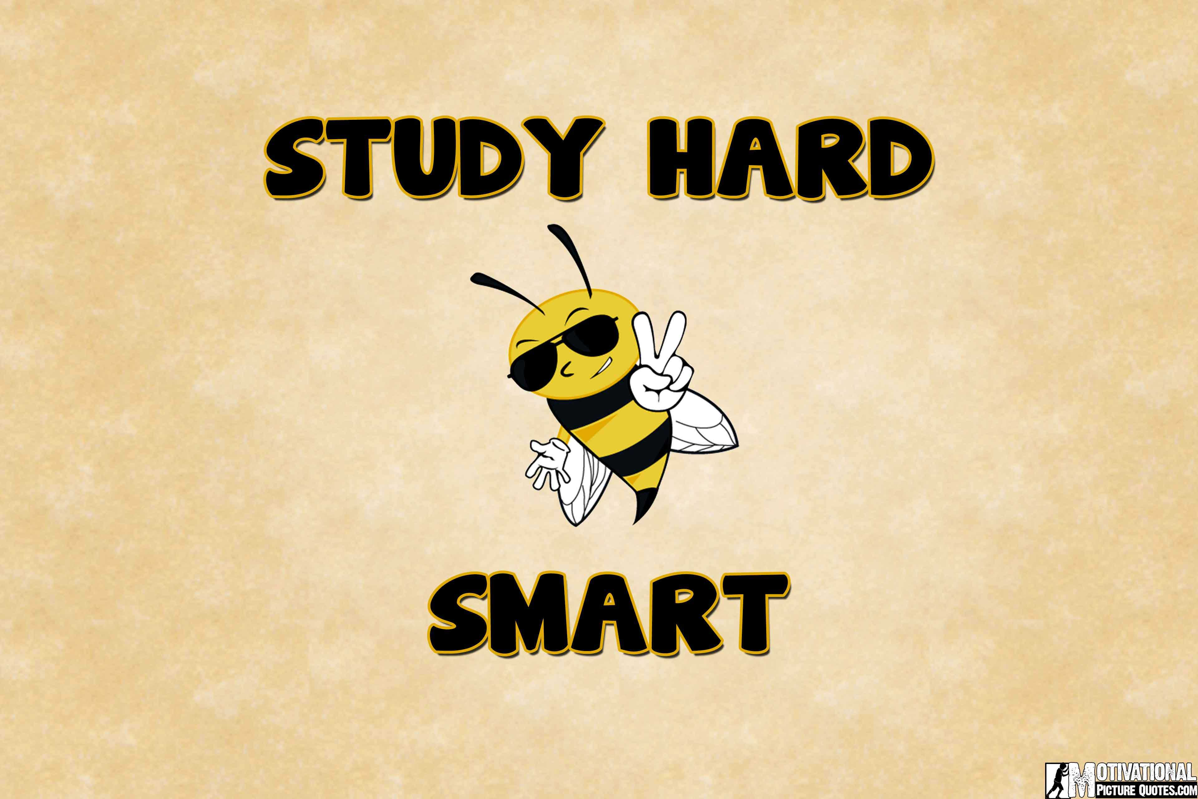 Crush Quotes For Him Wallpaper Study Wallpaper Hd Keep Calm And Study Hard Insbright
