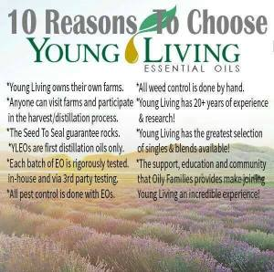 10-Reasons-to-Choose-YL