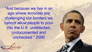 Constitution Liberty - Obama immigration