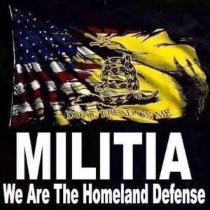 2A - Homeland Militia