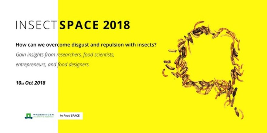 Symposium Insect Space 2018