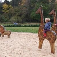 The Christmas Adventure at Stockeld Park
