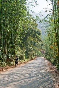 Sapa's backroads