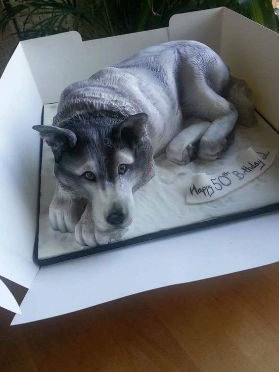 HuskyShaped Birthday Cake Muses  Inside Dogs World