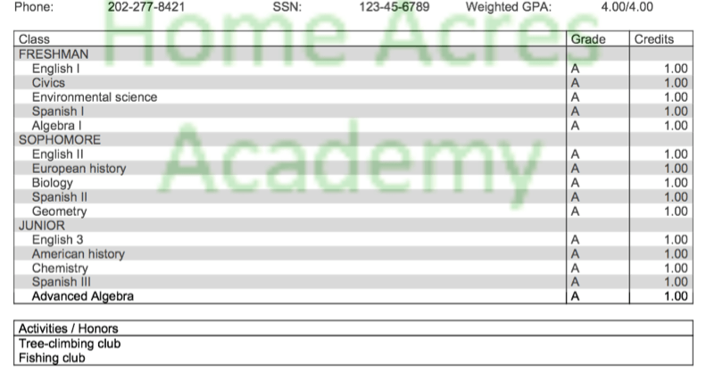 Fake transcript for Home Acres Academy features Social Security number 123-45-6789 and weighted GPA of 4.0. Courses taken include English, civics, environmental science, Spanish, algebra, European history, biology, geometry, American history and chemistry. Activities include tree-climbing club and fishing club.