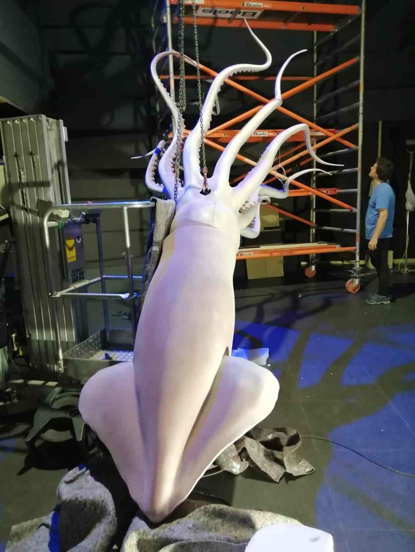 Expo & Educatie | montage model reuzeninktvis | Naturalis Biodiversity Center