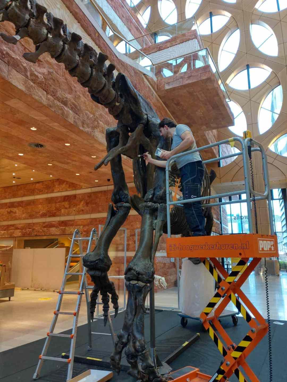 Fossielen & Dinosauriërs | Schilderen en montage van 3D-print T-Rex Trix | Naturalis Biodiversity Center | Nagasaki Japan