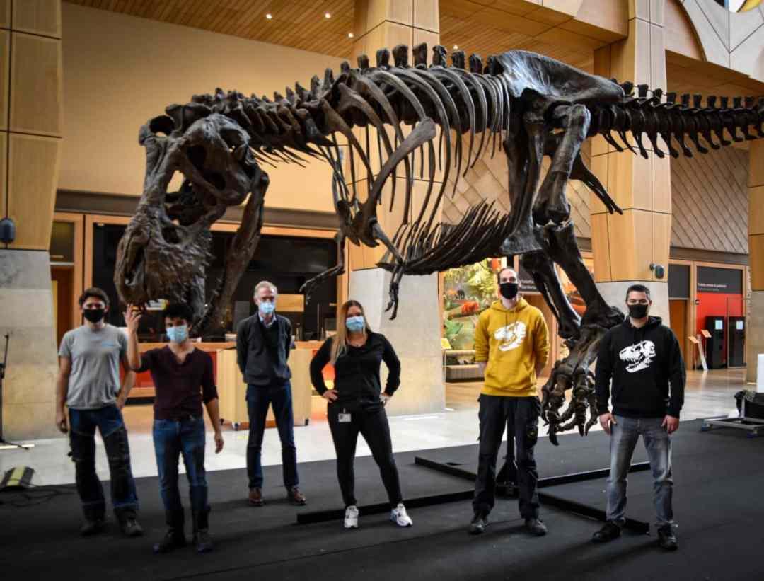 Fossielen & Dinosauriërs | schilderen en montage 3D-print T-Rex Trix | Naturalis Biodiversity Center | Nagasaki Japan