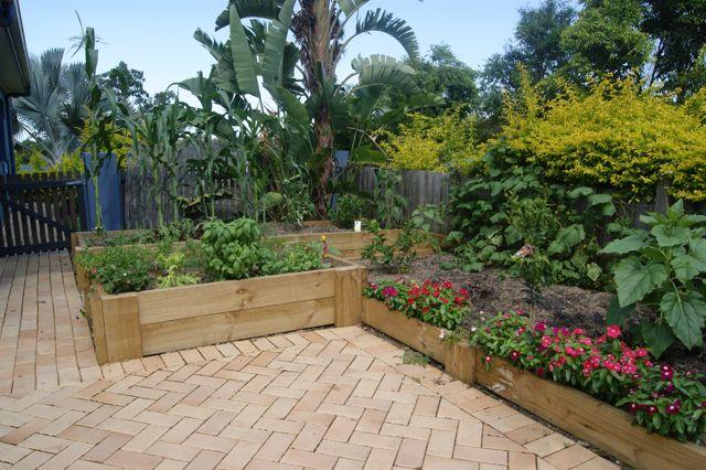 Raised Vegetable Garden Pics