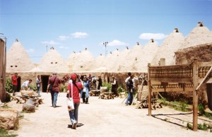 Check out the environmentally sustainable beehive houses in Harran!