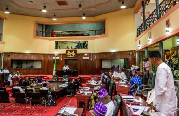 Oyo Assembly Defers Constitution Amendment on LG Autonomy, Approves 'Not Too Young To Run'