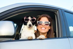 Dog and woman wearing sunglasses in a car.