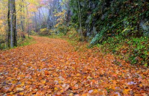 Hiking in the fall is one the best things to do in Pigeon Forge in the fall.