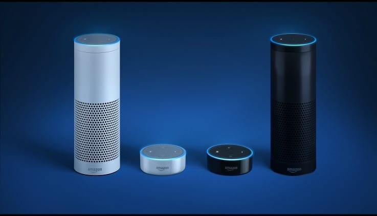 Echo voice retail voice commerce