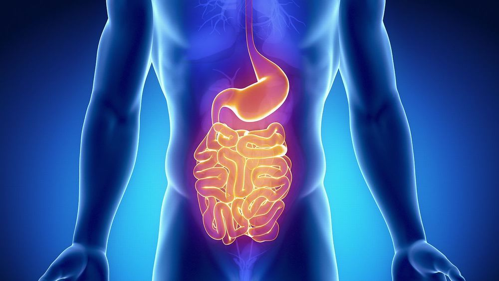 Human Stool as a Cure for Gastrointestinal Disease