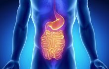 Got a Rumble in Your Tum? Take a Look at the Top 10 Digestive Issues