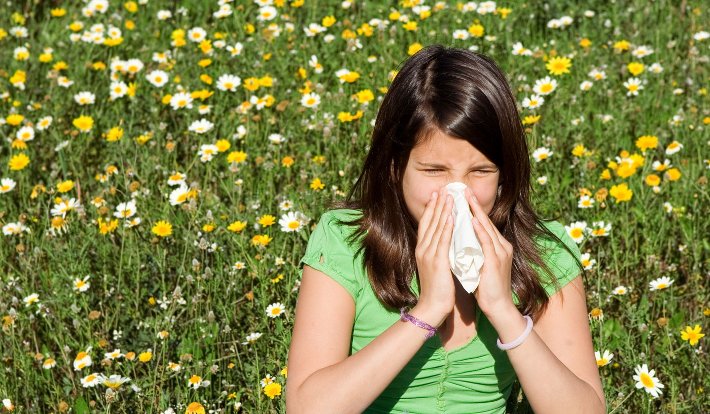 Learn about hay fever causes and treatment