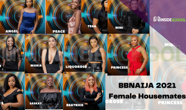 BBNAIJA 2021 Female Housemates – See Photos and Get to know them