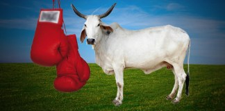 When Animal Husbandry Minister heads a sports association! - InsideSport