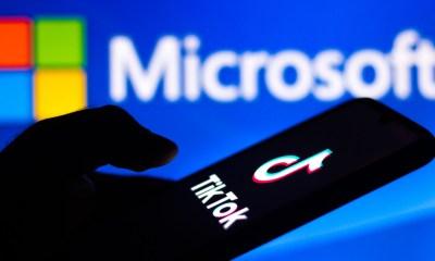 Microsoft's CEO