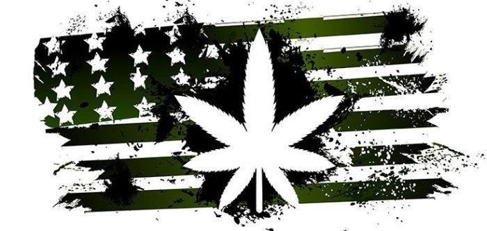 marijuana-america-735-350