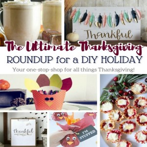 The Ultimate Thanksgiving Roundup for a DIY Holiday