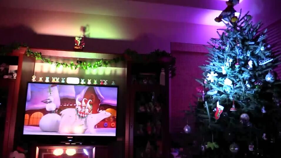 VIDEO: Nightmare Before Christmas Light Show - Inside the Magic ...