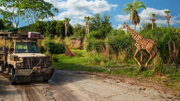 kilimanjaro-safaris-gallery02