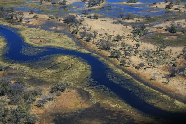 The Okavango Delta, Botswana - one of the Best Places to Visit in Africa