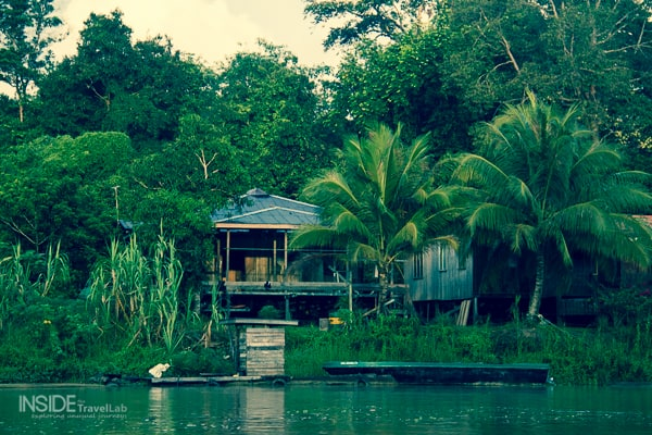 Sukau Rainforest Lodge Night Safariin Borneo from @insidetravellab