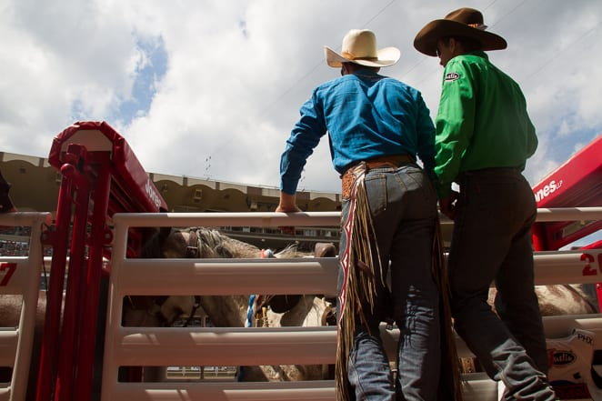 Cowboys at the Calgary Stampede
