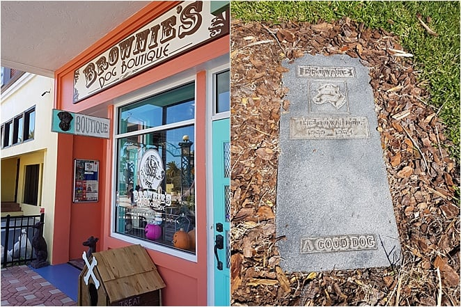 UNUSUAL things to do in Daytona Beach - visit Brownie's Dog Boutique