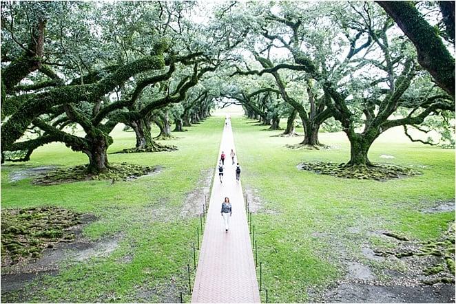 Great River Road Abigail King Oak Alley Plantation