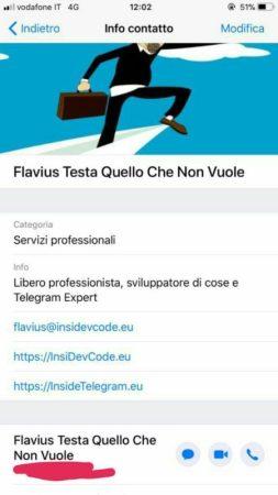 WhatsApp Business-profilo da iOS