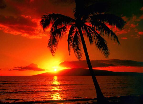 Idee per un viaggio di nozze spettacolare nelloceano Pacifico