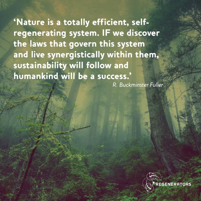 Quote from R. Buckminster Fuller