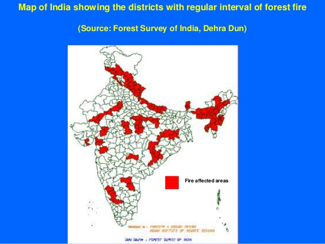 forest fires india map