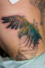 Kea-Colour-Tattoo