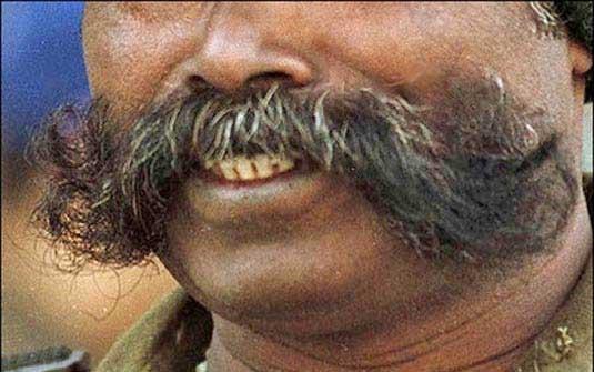bl-pl-olhe-essa-bigode-india1