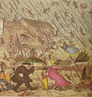 chuva-de-animais