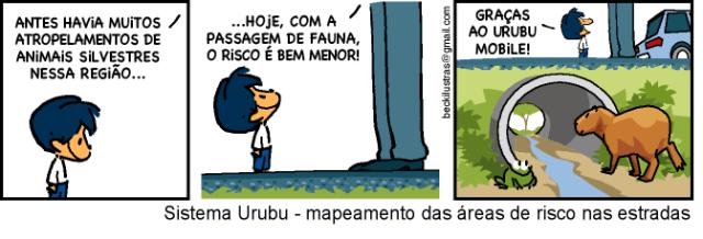 urubu06