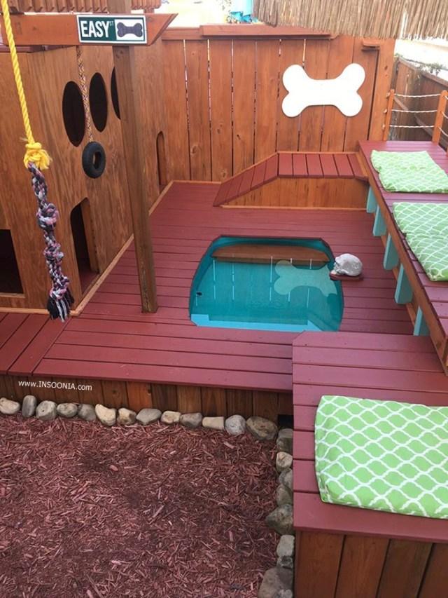 playground para seus cachorros