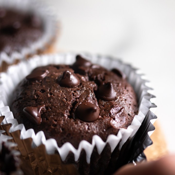 Double Chocolate Fudgy Muffins {GF and Low Carb}