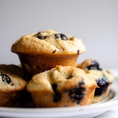 Keto Warm Vanilla Blueberry Mini Muffins
