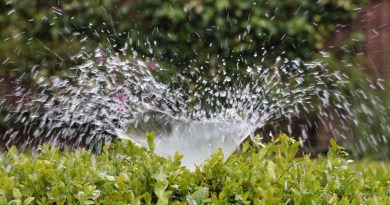 Irrigation Inject Water Sprinkler  - AxxLC / Pixabay